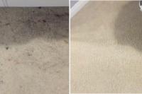 before-after-bedroom-carpet-cleaning-brantford