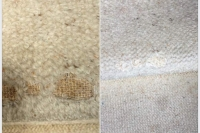 carpet-fixing-colour-loss-stretching