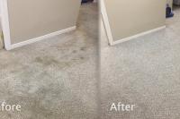light-carpet-clean-job-brantford-before-after-03